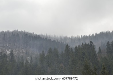 Morning mist in the mountains