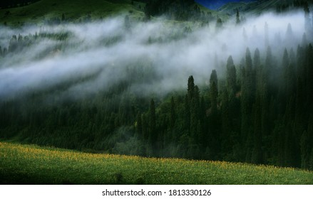 Morning Mists in the Tianshan mountians