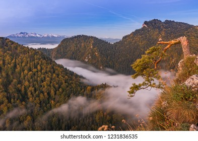 Morning mountains panorama, Pieniny Poland