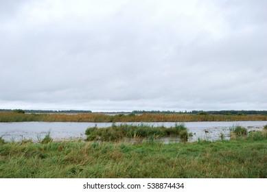 Morning on Lake Big Corner. Omsk region, Siberia, Russia