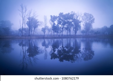 Morning on the lake early morning reeds mist fog and water surface on the lake, Pachmarhi, Madhya pradesh, India.