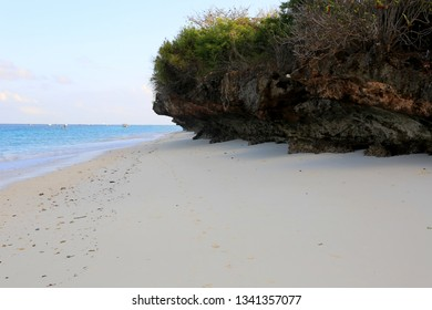 morning on ocean sandy shore