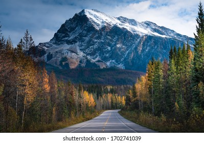 Morning on the road to Jasper, Alberta, Canada during fall season with trees changing colors