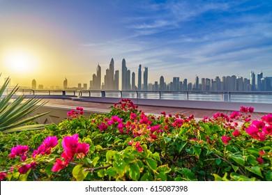 Morning Panorama of Dubai marina at sunrise, UAE