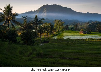 """Morning in the Peaceful Village of Sidemen, Bali. Sidemen is a great example of the peaceful and idyllic nature of the """"Island of the Gods"""", Bali, Indonesia. Rice terraces stretch to the horizon."""