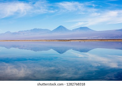Morning reflection of the Andean Atacama landscape in the waters of the Chaxa Lagoon