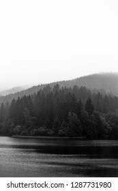 In the morning at the reservoir. In the Background forest and mountains, black-and-white, Portrait