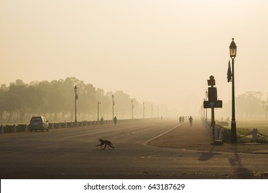 morning scene of rajpath road in winter time, this road way to India gate.