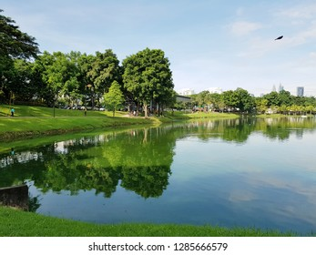 Morning scenery of a lake garden in the city