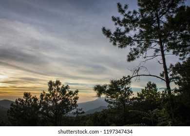 morning sky or sunrise sunset and mountain behide the forest or pine