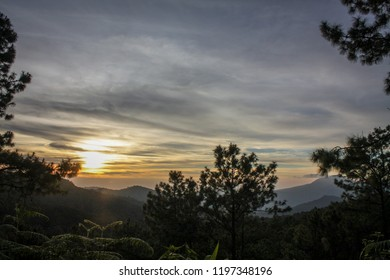 morning sky or sunrise sunset and mountain behide the forest
