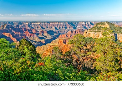 The morning sun lights up the rock formations at the North Rim of the Grand Canyon