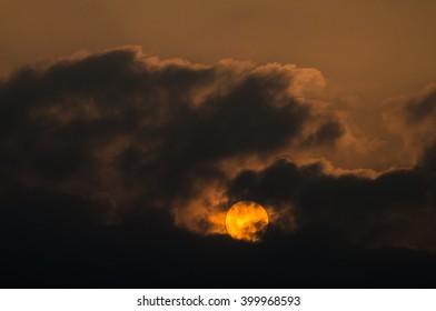 Morning sun shadow of a tree