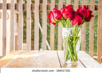 Morning sun shining on red roses vase, stock photo