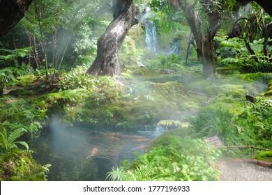 Morning sunlight mist fog in park. foggy misty garden. water spraying from sprinkler for watering plant, Thailand.