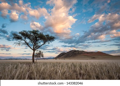 Morning Sunlight shines golden hues onto a cloudy sky above the Namib Rand Landscape.