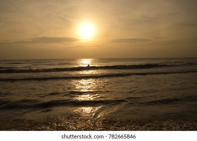 Morning sunlight, the sun rising from the sea, pine trees as a backdrop at a beach.