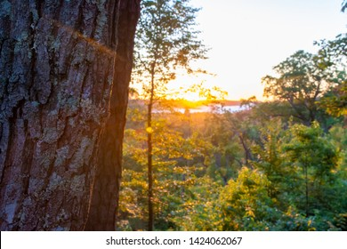 Morning sunrise provides illimination over the Red River Gorge