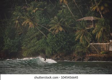 Morning surfer at Marissa beach in Sri Lanka