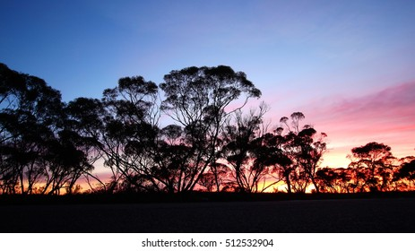 Morning time in Australian outback
