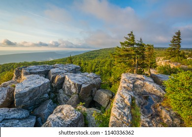 Morning view from Bear Rocks Preserve in Dolly Sods Wilderness, Monongahela National Forest, West Virginia.