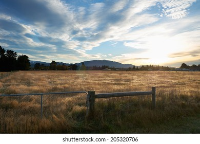 Morning view of brown meadow in Springfield, West Coast, South Island, New Zealand