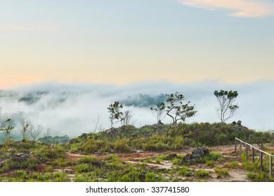 Morning view at Mirador el Oso (The Bear viewpoint), at Canaima National Park, Venezuela