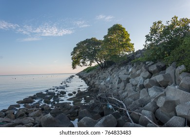 morning view on the edge of the rocks jetty. trees grow on rocks breaking water. beautiful blue sky and there is a thin cloud.