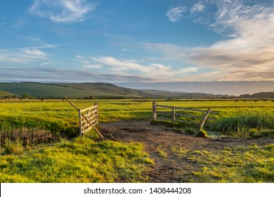 A morning view of an open gate and green fields, in the South Downs in Sussex