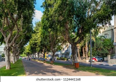 Morning view  of  Rothschild boulevard  in Tel Aviv, Israel.