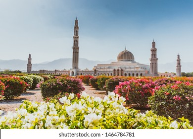 Morning view of Sultan Qaboos Grand Mosque in Muscat, Oman. Blooming bushes in foreground, mountains behind the mosque.