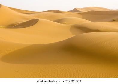 Moroccan desert dune