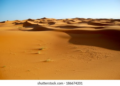 Moroccan Sand dunes in the Sahara Desert with Blue Sky