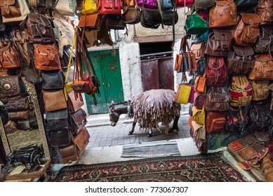 Moroccan tanneries Fes