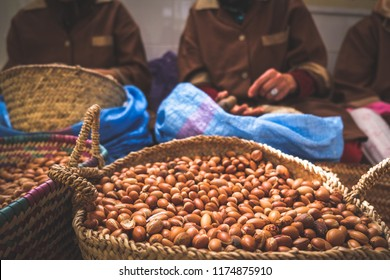 Moroccan women working with argan seeds to extract argan oil.