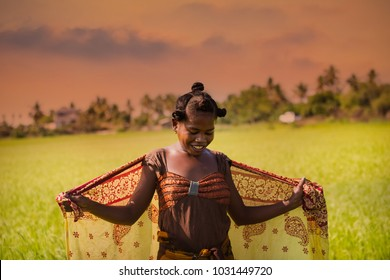 MORONDAVA-MADAGASCAR-OCTOBER-7-2017:Unidentified Woman worker  Madagascar, Africa woman worker harvesting rice  field in the morning at Morondava town.