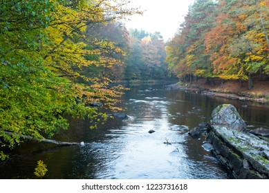 Morrum river in October scenery