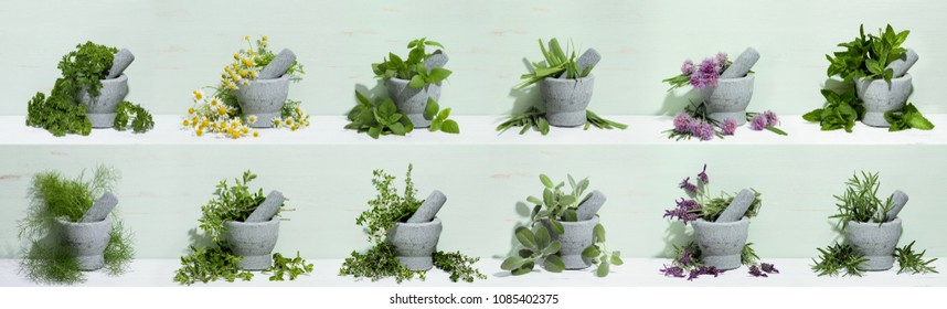 Mortar with aromatic kitchen herbs