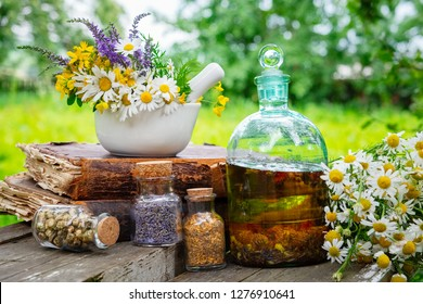 Mortar of healing herbs, bottles of healthy essential oil or infusion and dry medicinal herbs, old books and bunch of chamomile plant. Herbal medicine.