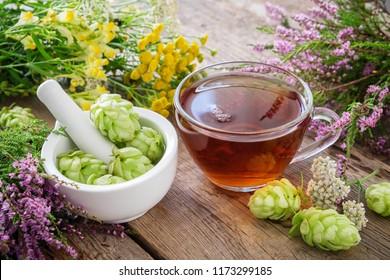 Mortar of hop cones, medicinal herbs and healthy herbal tea. Herbal medicine.