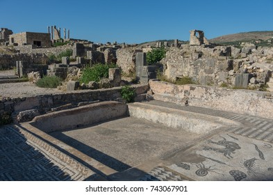 Mosaic floor, Volubilis ruins, the excavations of the roman city in the archaeological site Volubilis, North Morocco.