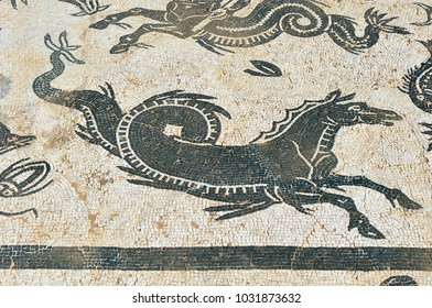Mosaic of Hippocampus, House of Neptune in Italica, Roman city near Santiponce in the province of Seville, birthplace of Emperor Trajan and origin of the family of Hadrian, Andalusia, Spain
