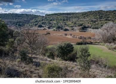 Mosaiklandschaft in der Gemeinde Olmeda de las Fuentes, Provinz Madrid, Spanien