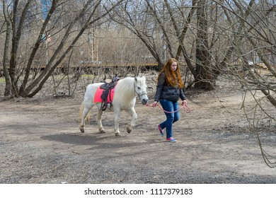 MOSCOW – APRIL 19, 2015: Girl letting her red hair down drives white horse in park on April 19, 2015 in Moscow.