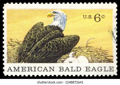 MOSCOW, December 1, 2018: CIRCA 1969: A stamp printed in USA shows American bald eagle, circa 1969