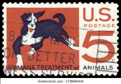 MOSCOW, May 21, 2020: A 5 cent US commemorative stamp for Humane Treatment of Animals, with a dog , circa 1966