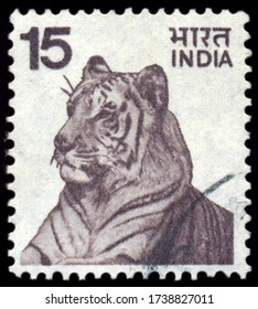 MOSCOW, may 21, 2020: A stamp printed in India shows tiger, circa 1970s