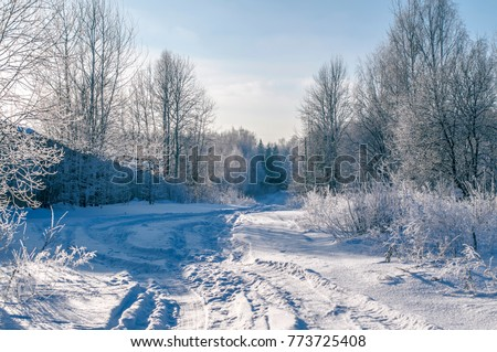 Moscow Region Winter Landscape Background With Cold Weather Blue Pattern Snowy Wallpaper
