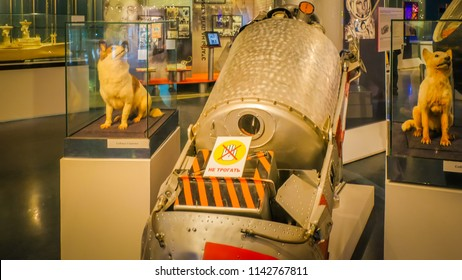 Moscow, Russia; 05 18 2017: The dogs Belka and Strelka, first animals to return alive space travel, and the Sputnik 5 capsule that transported them in orbit exhibited at the Museum of Cosmonautics.