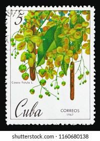 MOSCOW, RUSSIA - AUGUST 18, 2018: A stamp printed in Cuba shows Cassia fistula, Botanical Gardens in Cuba serie, circa 1967